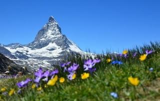 Sentier de grande randonnée dans les Alpes.