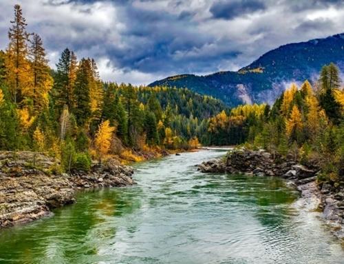 Canyoning en automne : le plein de couleurs et de nature